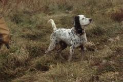 Hunting-dad-me-ilan-December-2011
