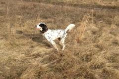 hunting-December-2011-2